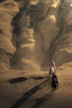 #Chevaux dans le désert