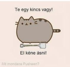 Pusheen Cute, Benne, Fake Friends, Grumpy Cat, Funny Moments, Kawaii, Cute Wallpapers, Funny Photos, Charlie Brown