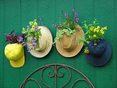 Hats off: Give tired or tattered old hats new life as a hanging garden. Baseball hats make instant pot covers: Simply open the sizing tabs in back, slip the opening around the base of the plant and snap the tabs closed again. On straw, felt or fabric hats, cut a hole into the front or top and gently feed the plant stems … #gardening
