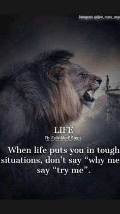 Real Life Quotes, Badass Quotes, Reality Quotes, True Quotes, Qoutes, Lioness Quotes, Wolf Quotes, Men Quotes, Buddha Quotes Inspirational