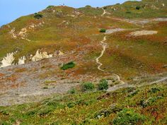 Cabo da Roca Cabo, Mountains, Nature, Travel, Naturaleza, Viajes, Trips, Nature Illustration, Outdoors