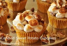 Candied Sweet Potato Cupcakes - A classic Thanksgiving side dish is transformed into a whimsical cupcake version, complete with a marshmallow and pecan topping. Fun Cupcakes, Cupcake Cakes, Spice Cupcakes, Sweet Potato Cupcakes, Candied Sweet Potatoes, Candied Pecans, Thanksgiving Side Dishes, Cupcake Recipes, Dessert Recipes