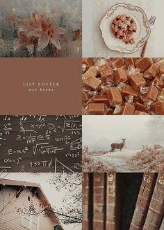 Lily Potter 1/2