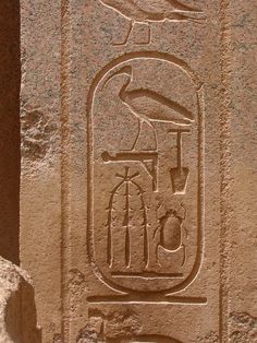 #Ancient #Egyptian #cartouche of Thutmose III, Karnak, Egypt. - Egypt Car Hire offers Egypt tour for booking visit : egyptcarsrental.com