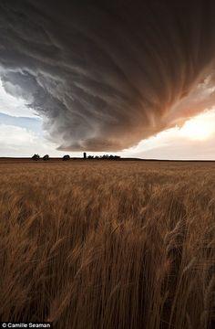 Supercell storm cloud (Low Precipitation) above the Gurley wheat field, Nebraska on 22 June 2012....