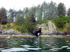 hole in Thomas Island British Columbia, Islands, Mountains, Nature, Travel, Naturaleza, Viajes, Destinations, Traveling