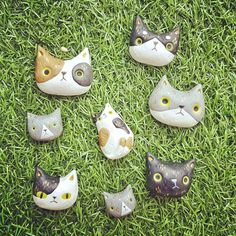This is the way I spent on holiday :) Set of cat polymer clay! Still decide what they will go. Magnet or Brooch?    #polymerclay #cats #cute #kawaii #magnets #brooch