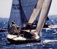 requin Sailing Ships, Cruise, Vehicles, Boats, Travel, British Car, Shark, Collector Cars, Sailboats