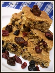 Dried Fruit Oatmeal Bar Cookies