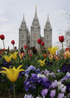 What Do Mormons Think About other Religions?