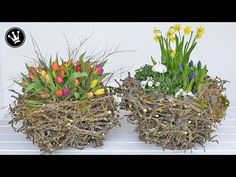 DIY & make spring decorations / Easter decorations yourself I XXL nest from branches I decorate with spring flowers Wooden Posts, Country Style Homes, Apple Tree, Getting Cozy, Chalk Art, Blogger Themes, Diy Organization, Door Wreaths, Belle Photo