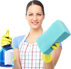 Karınca Temizlik Şirketleri | İstanbul Temizlik Şirketleri