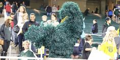 """You've seen it at #Baylor games, in the stands or on TV. But who's behind this """"Fringe Monster?"""" And will we see it back at McLane Stadium?"""