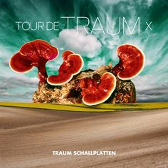 VA – Tour De Traum X (Mixed By Riley Reinhold) » Minimal Freaks