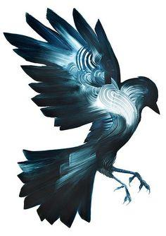 """龍國竣/リュウゴクさんのツイート: """"アダム・ドイルによる作品。白い背景によって無限の世界観を表現しています。描かれた鳥は無限に広がる空を飛ぶ私達の願望をあらわすシンボルです。(Adam Doyle) https://t.co/0hPP1r59NW"""""""