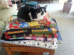 """July 3 - Featured Quilts on 24 Blocks - 24 Blocks - """"My Oopsie checks out the quilts that I make for an orphanage in Ghana, West Africa before I send them to make sure they're comfy.... Please like my facebook page: """"Quilts of Love for Orphans""""!"""""""