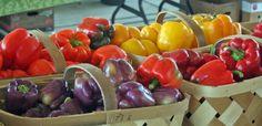 Mt. Pleasant, SC Farmer's Market ~ Gettin' Fresh with the Locals.  HUB by Kim Morgan Gregory.