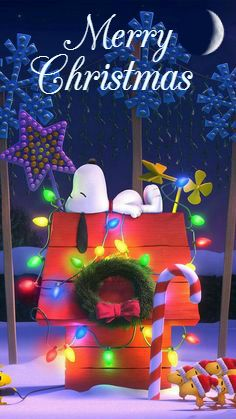 snoopy and woodstock on doghouse oh snoopy bald ist. Black Bedroom Furniture Sets. Home Design Ideas