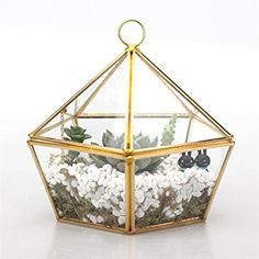 Modern Artistic Brass Copper Clear Glass Jewel-boxed Pentagon Shape Glass Geometric Terrarium Plant Succulent Planter Box Moss Fern with Swing Lid Gold