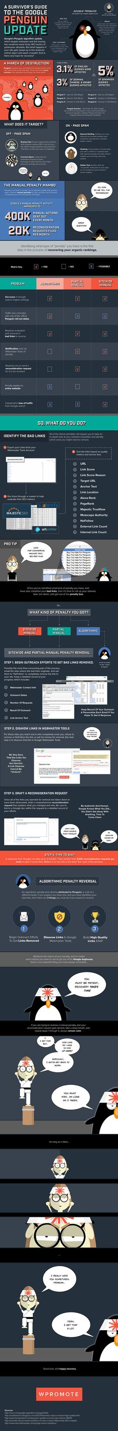 A Survivor's Guide To The Google Penguin Update