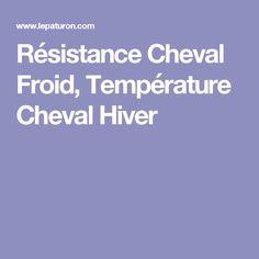Résistance Cheval Froid, Température Cheval Hiver