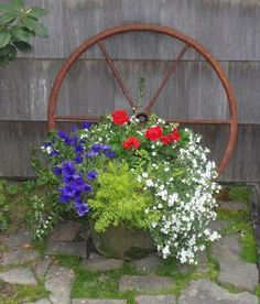 Pretty combination for a flower box or large pot.