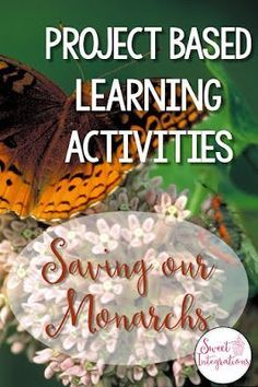 Saving Our Monarchs - 5 Ways Students Can Get Involved - Sweet Integrations - Great ideas here for the or grade classroom or home school students and their teacher. Science Resources, Science Lessons, Teaching Science, Science Activities, Life Science, Hands On Activities, Classroom Resources, Teaching Ideas, Library Activities