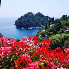 """Mi piace"": 16, commenti: 1 - Conceito G Produções & Eventos (@conceito_g) su Instagram: ""Honeymoon suggestions ! Our team visited a few locations this summer. #Portofino #Italy"""