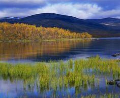 Autumn coloured Lapland, Finland