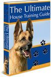 Puppy House Training | House Train Your Dog The Right Way | Potty Training Puppy