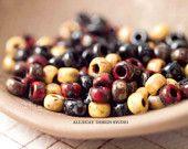10g ALLIECAT Picasso Miyuki Mix I 6/0 Miyuki Seed Beads (CB027)