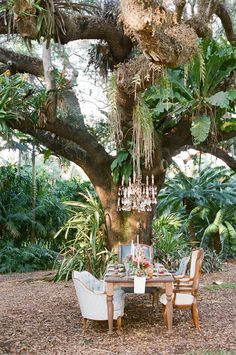Love this idea for an outdoor spring wedding. Beautiful chandelier hanging from the tree's branches! #springwedding #wedding #florals