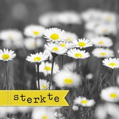Kaarten - sterkte nw | Hallmark Art Quotes, Motivational Quotes, Birthday Collage, Get Well Soon, In Loving Memory, Afrikaans, E Cards, Grief, Memories