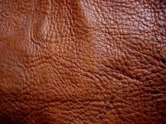 Find out how to tan deer skins with tannins, which give a beautifully textured soft leather. Blog for people in the Inland Northwest.