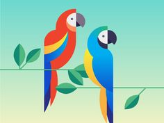 Parrots / Macaws vector illustration by Sophie Nemethy Parrot Drawing, Geometric Bird, Bird Illustration, Bird Drawings, Bird Art, Vector Art, Pop Art, Art Projects, Canvas Art
