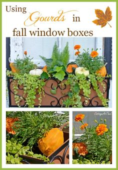 Image result for how to make a charleston window box from pallet board