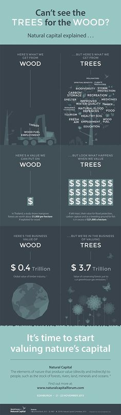 What is natural capital? - infographic
