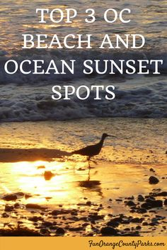 Suggestions for spots to view beach and ocean sunsets in Orange County, California. Ocean Sunset, Best Sunset, Best Vacation Spots, Best Vacations, Camping Spots, Estes Park, Winter Scenes, Lake Tahoe
