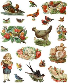Dover~Vintage~personal use only ~ Bird Scrap Variety One by Home and Heart, via Flickr