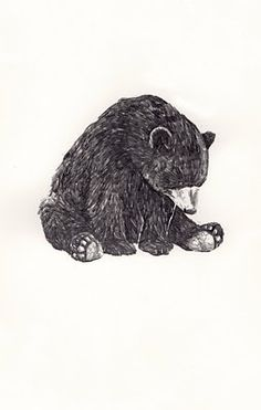 Lonely bear, i wanna draw this but have him looking at something, like a butterfly or something, he looks too melancholy.