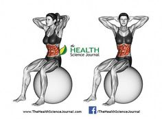 Turns torso sitting on fitball. Turns torso sitting on fitball. Exercising for Fitness. Target muscles are marked in red. Initial and royalty free illustration Best Ab Workout, Abs Workout For Women, Workout Videos, Ab Workouts, Oblique Workout, Mens Fitness, Yoga Fitness, Health Fitness, Fitness Tips