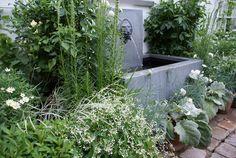 Kjeld Slot Claus Dalby the sunken garden