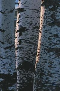 Body/Legs:  Birch bark coverings.  This pin links to an article on how to soften birch bark to make it more pliable.