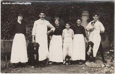 Servants with Retriever-types and Fox Terrier/JRT, c.1910 Format: Postcard Origin: France