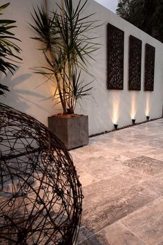 Wall art, Rusted Wire Ball and Dracaena with garden night lighting