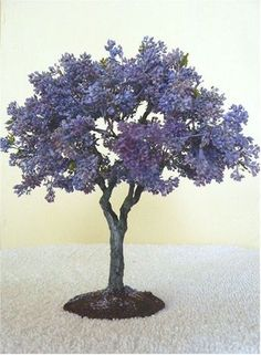 Miniature Jacaranda by Marilyn Heath Lauffer