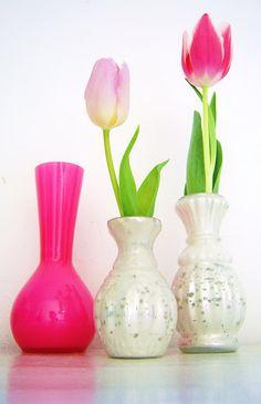 :)  Love tulips :)