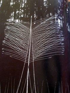 neelhe-nils udo (2)
