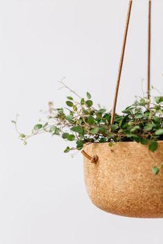 Large Hanging Plante