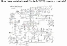 """The """"starvation disease"""". Metabolomics meets ME/CFS down under (by Health Rising)"""
